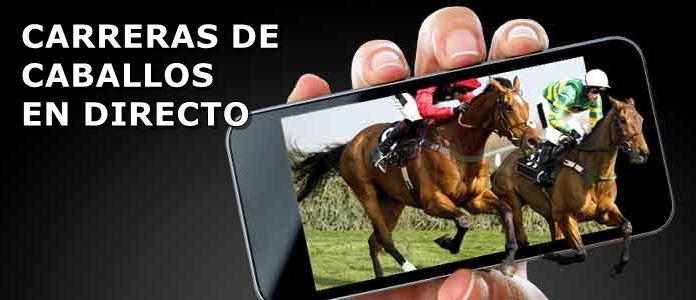 ver caballos en directo bet365