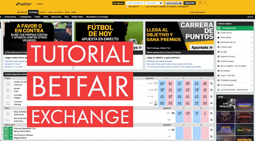 betfair exchange tutorial